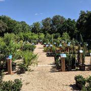 A Fairy Garden Photo Of Rainbow Gardens   San Antonio, TX, United States