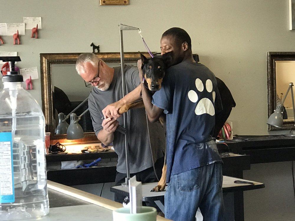 Artistic Dog & Cat Grooming