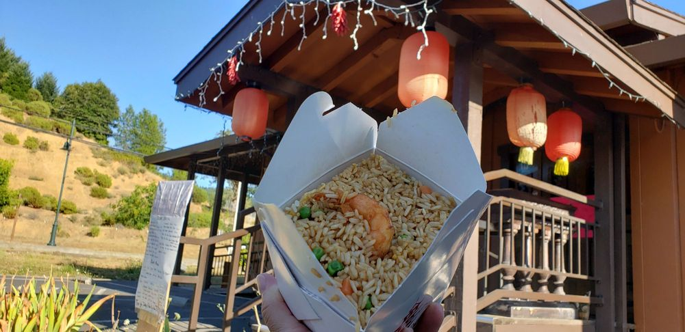 Anna's Asian Palace: 45020 N Hwy 101, Laytonville, CA