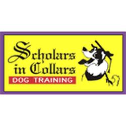 Scholars In Collars Dog Training