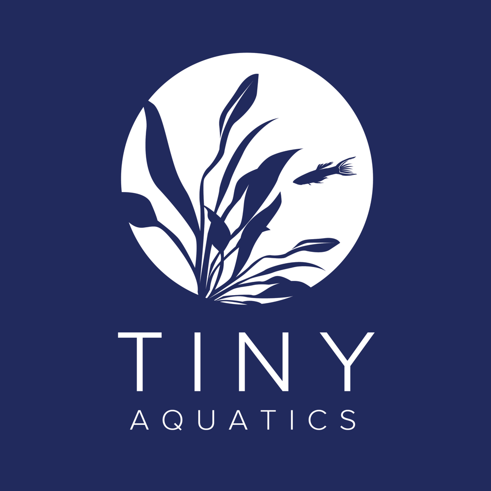 Tiny Aquatics: 1100 Sam Bass Rd, Round Rock, TX
