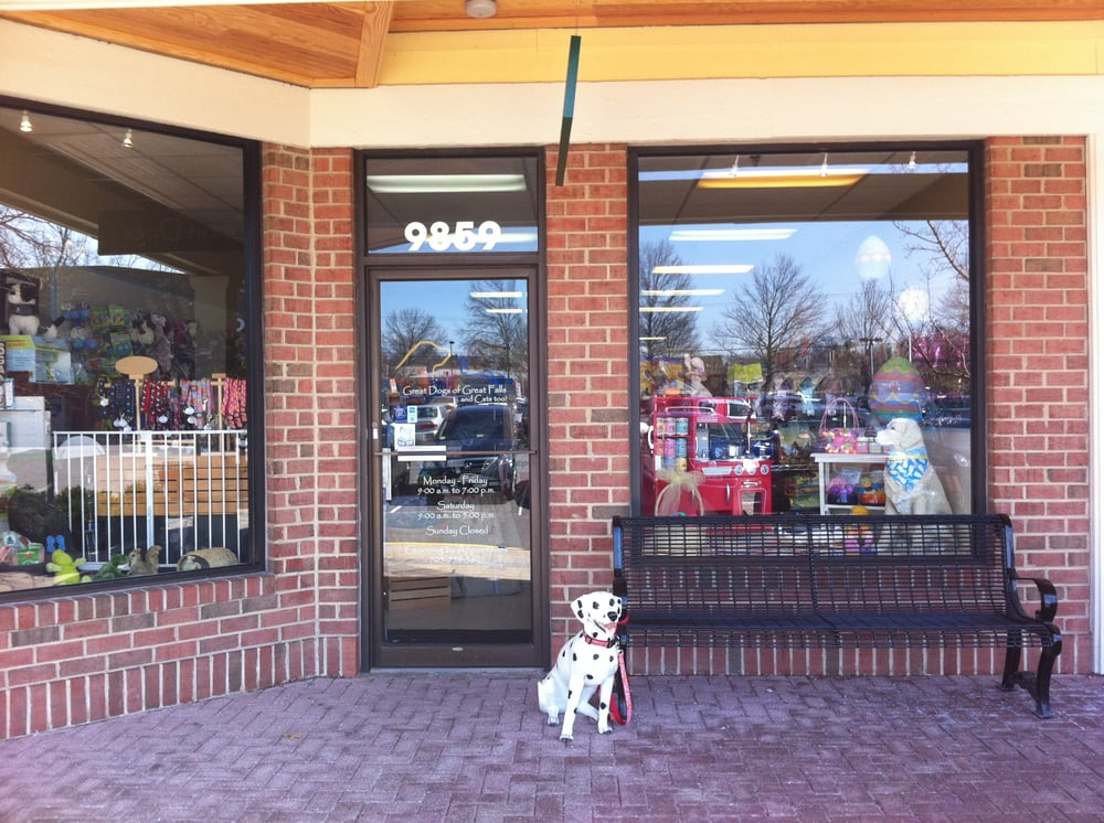 Great Dogs of Great Falls: 9859 Georgetown Pike, Great Falls, VA