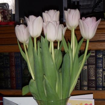 Potomac Floral Wholesale 140 Photos 65 Reviews Florists 2403