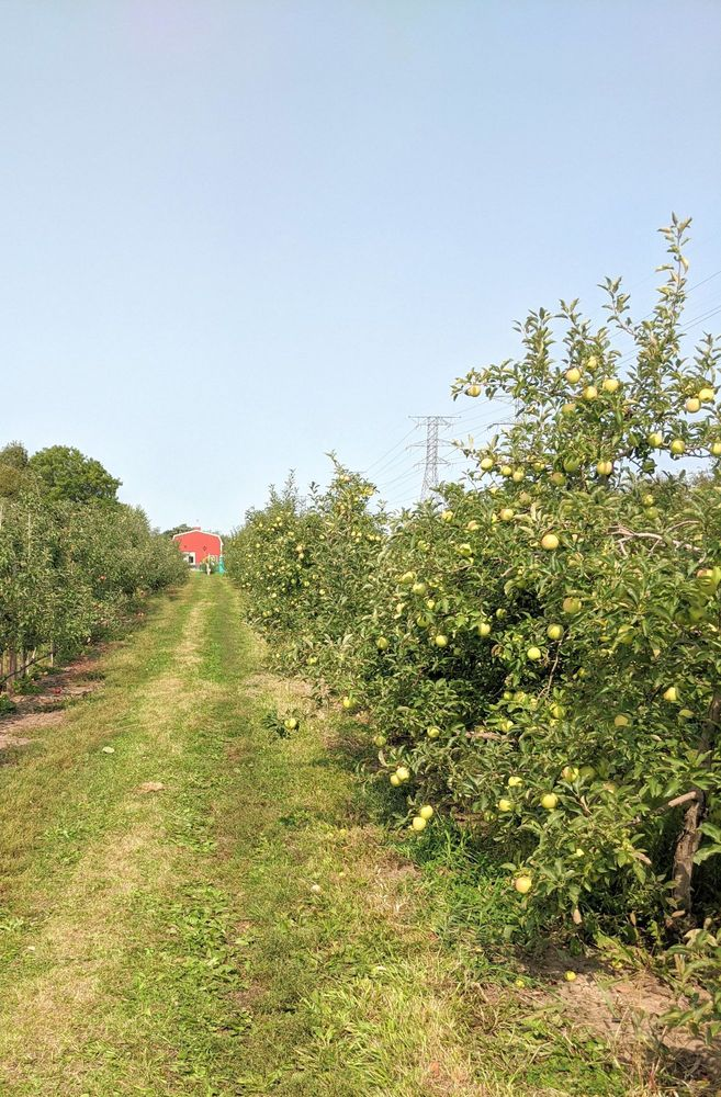 Valley Orchard: 811 E State St, Cherry Valley, IL
