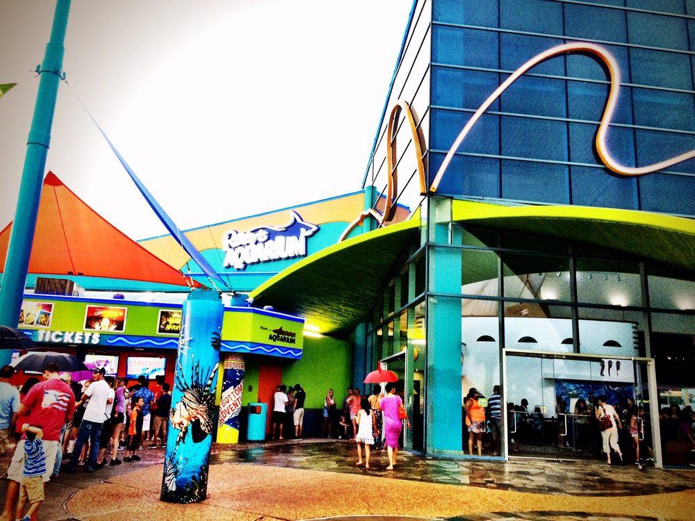 Ripley's Aquarium Myrtle Beach - 578 Photos & 324 Reviews ...