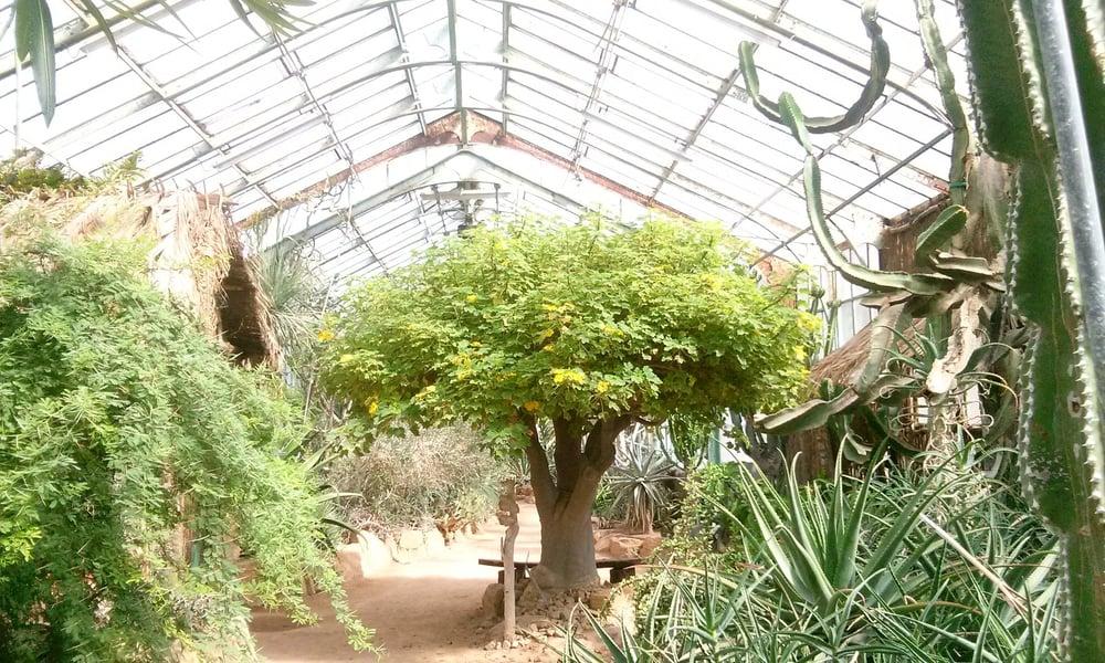 Jardin botanique 31 photos botanical gardens parc de - Jardin botanique de lyon ...