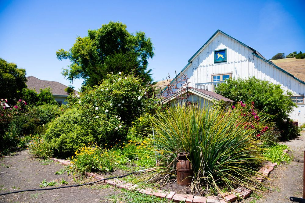 Harley Farms: 205 North St, Pescadero, CA