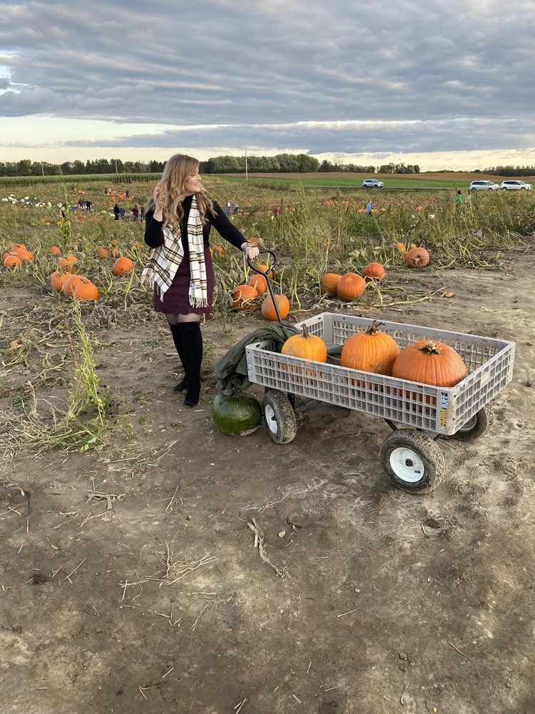Dehn's Pumpkins: 17270 125th Ave N, Dayton, MN