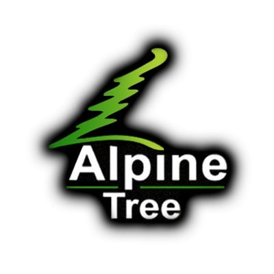 Alpine Tree