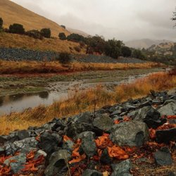 Top 10 Best Things To Do On A Rainy Day In Fremont Ca Last