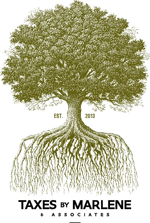 The Tree Of Life Represents Strong Roots And Consistent Growth