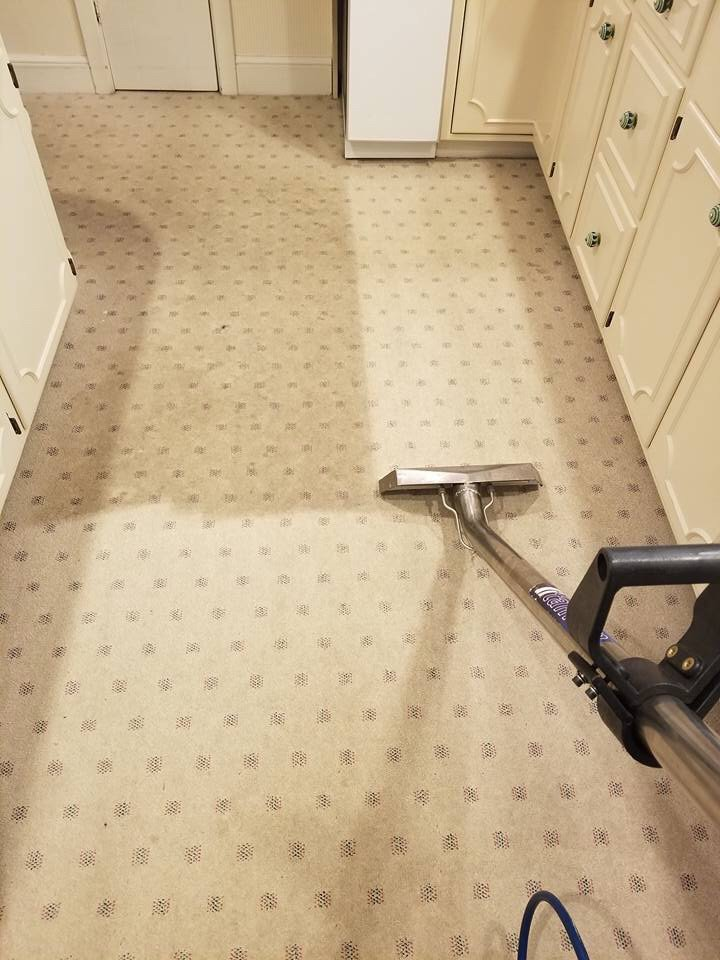 New World Carpet Cleaning