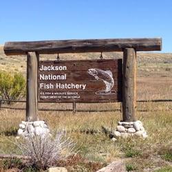 Jackson national fish hatchery ffentliche einrichtungen for Fish hatchery rd