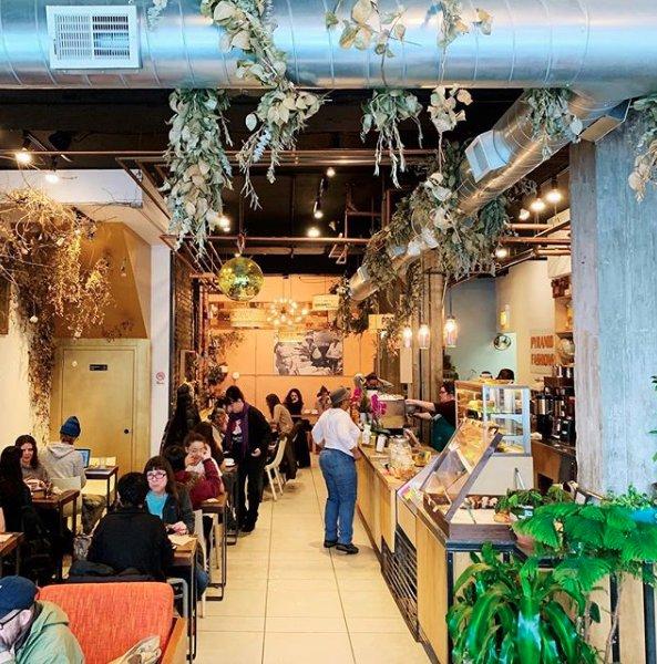 Sol Cafe
