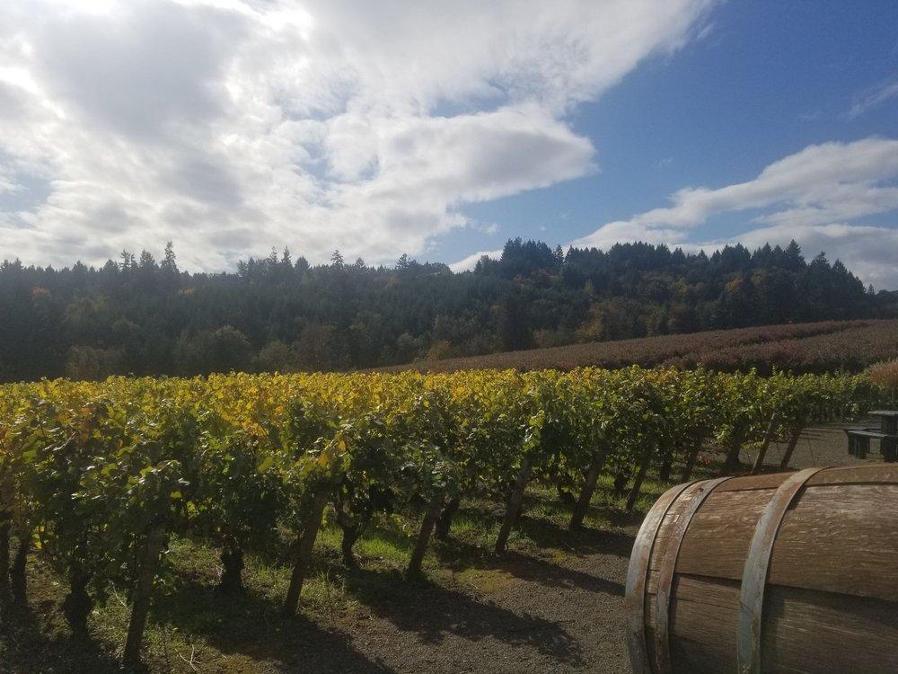 Ardiri Winery & Vineyards: 35040 SW Unger Rd, Cornelius, OR