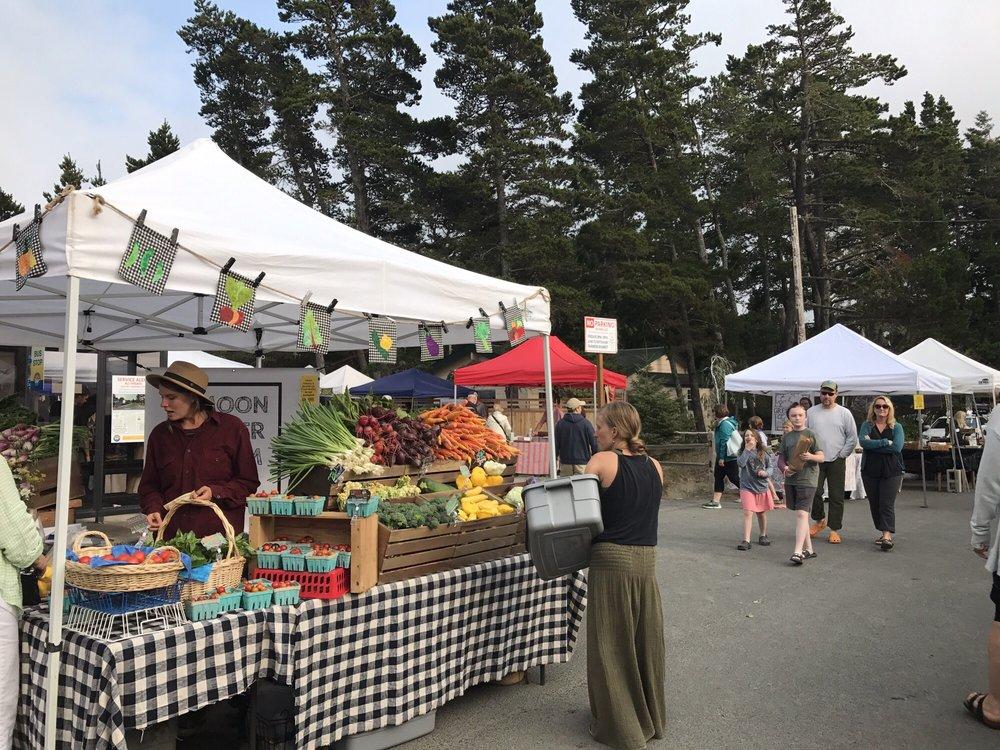 Manzanita Farmers Market: 467 Laneda Ave, Manzanita, OR