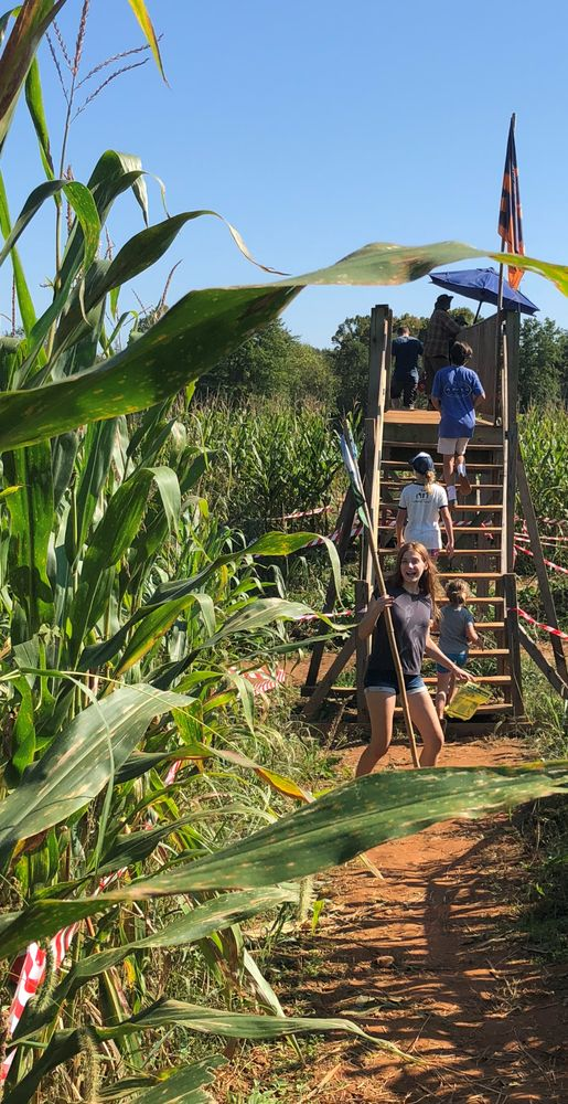 The Corn Maze in the Plains: 4501 Old Tavern Rd, The Plains, VA