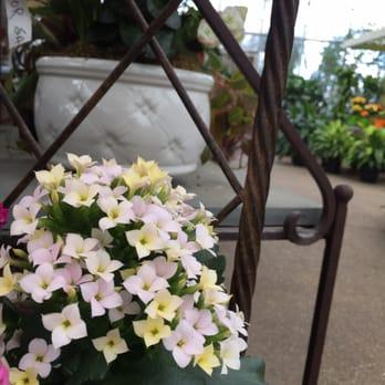 Merrifield garden center 43 photos 71 reviews - Merrifield garden center fairfax va ...