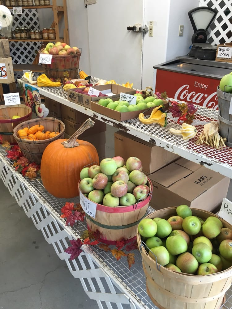 1-70 Fruit Stand: 37 3/10 Rd, Palisade, CO