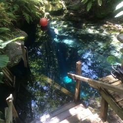 Paradise Springs - Diving - 4040 SE 84th Lane Rd, Ocala, FL - Phone