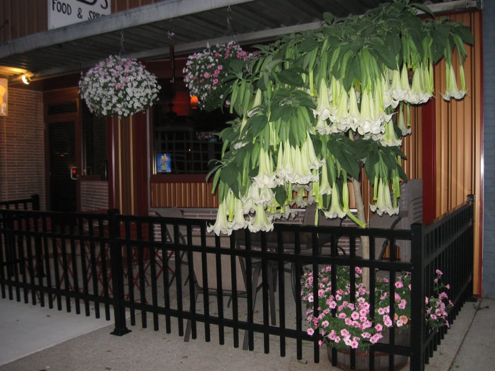 JD's Restaurant and Bar: 426 Warren St, Huntington, IN