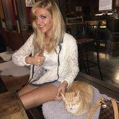 Cat Cafes Near Nj