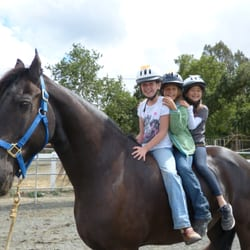 Almaden Equestrian Center Closed Horseback Riding
