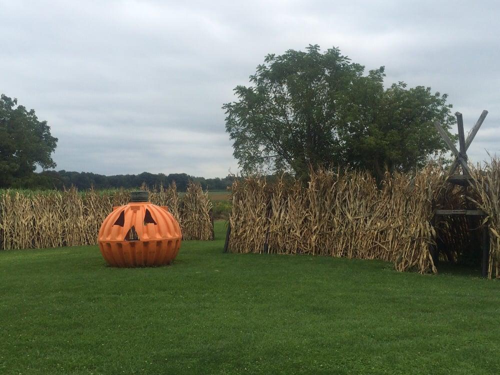 Dinges Farms: 15219 Mill Rd, Three Oaks, MI