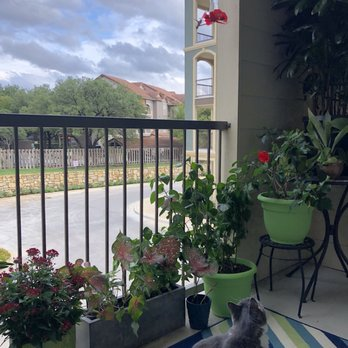 over balcony planters My Newly Landscaped Balcony Not ALL Plants And Planters