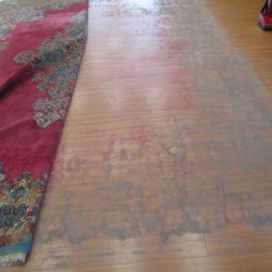 Photo Of Capital Rug Cleaning Rockville Md United States