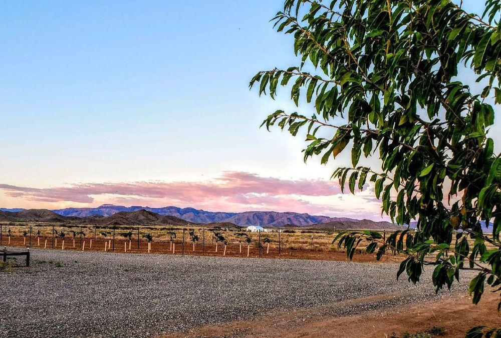 Little Old Wine Drinkers Winery: 10919 N Sharon Rd, Kingman, AZ