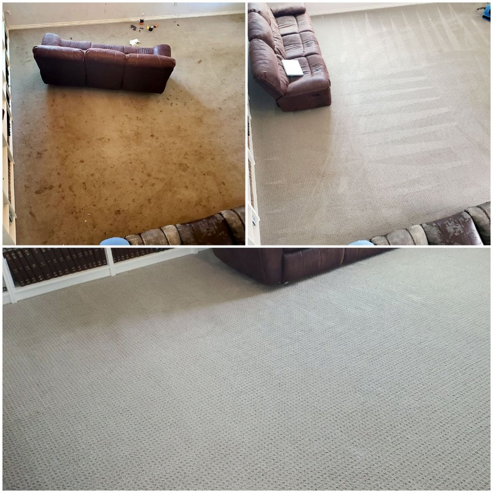 Monster Steamer Carpet Cleaning