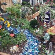 Succulents Photo Of Heartland Nursery Kansas City Mo United States Fairy Garden