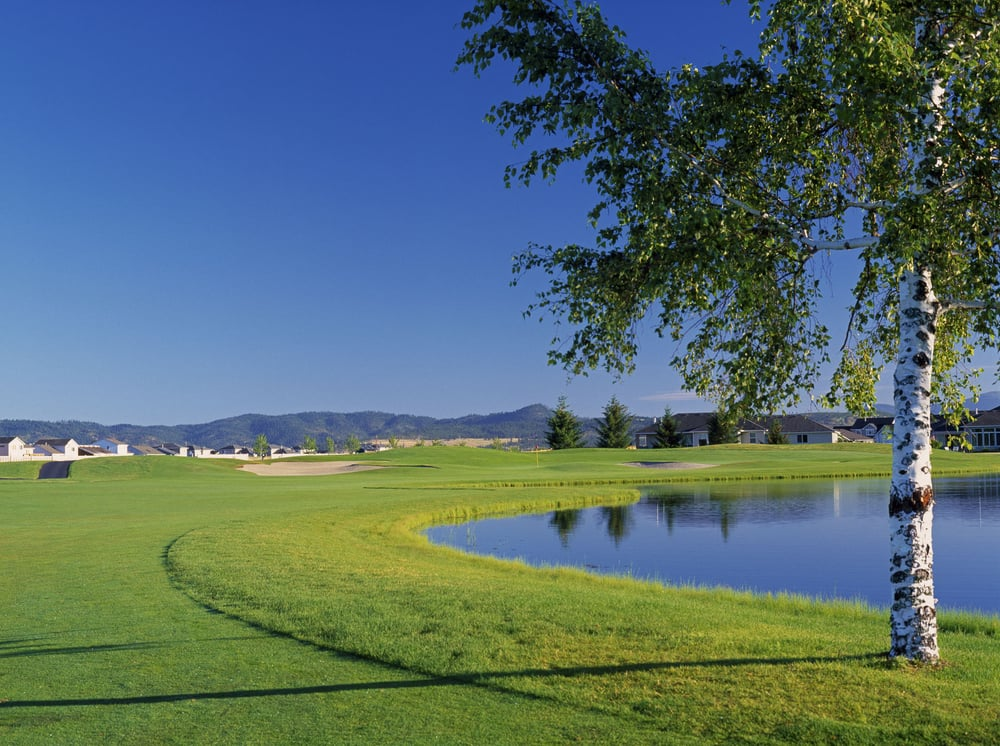 MeadowWood Golf Course: 24501 E Valleyway Ave, Liberty Lake, WA