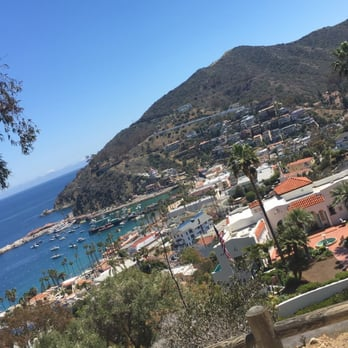 Avalon Scenic Tour Review