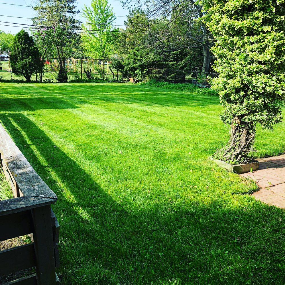 GTR Lawn Service: Berkley, MI