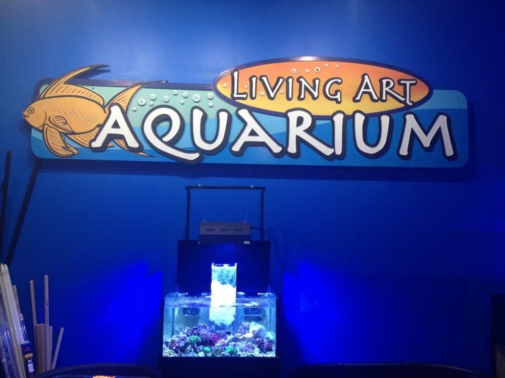Exceptionnel Photo Of Living Art Aquarium   Madison, WI, United States