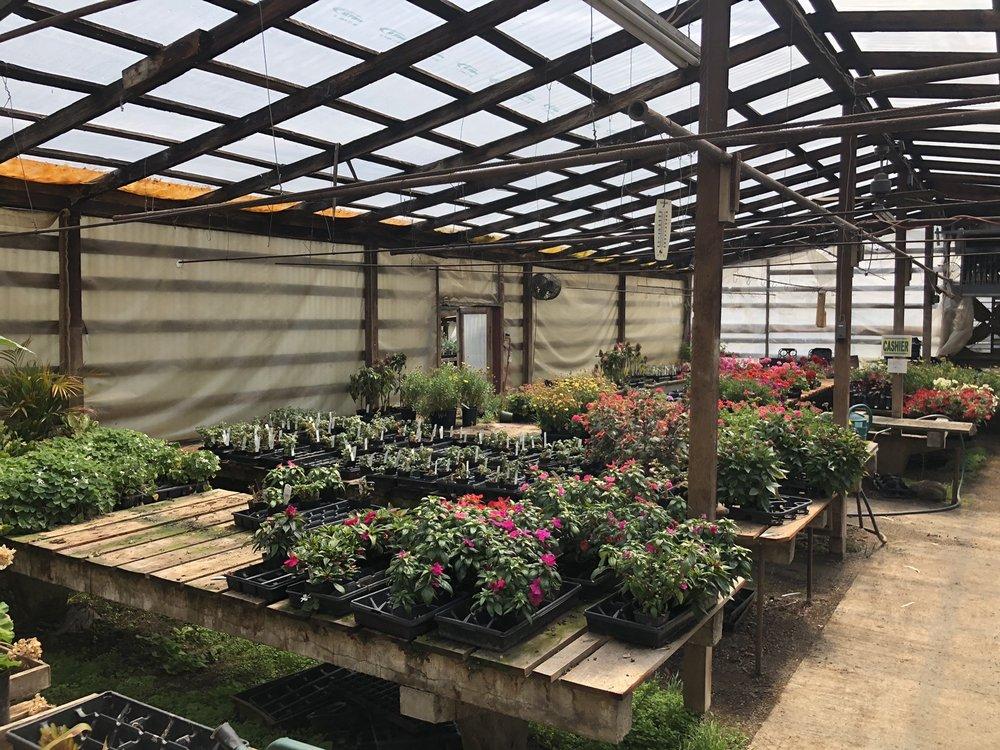 Satsop Landscaping & Nursery: 746 Monte Elma Rd, Montesano, WA