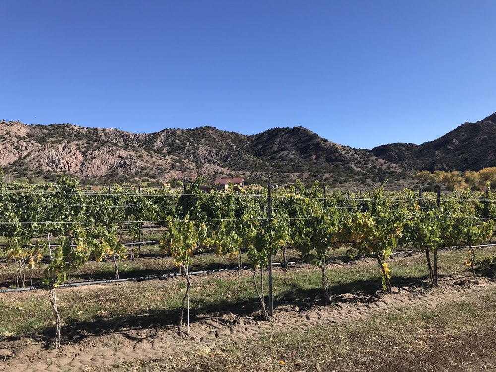 Vivac Winery: 2075 State Hwy 68, Dixon, NM