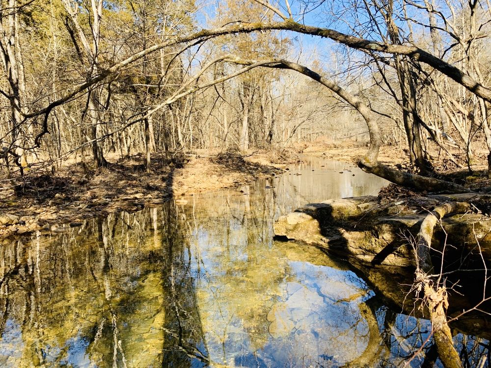 St Francois State Park: 8920 US Highway 67, Bonne Terre, MO
