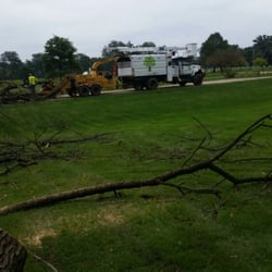 Photo of Canopy Tree Care - West Chicago IL United States. One of & Canopy Tree Care - Tree Services - 245 W Roosevelt Rd West ...
