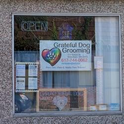 Dog Grooming Watertown Ma
