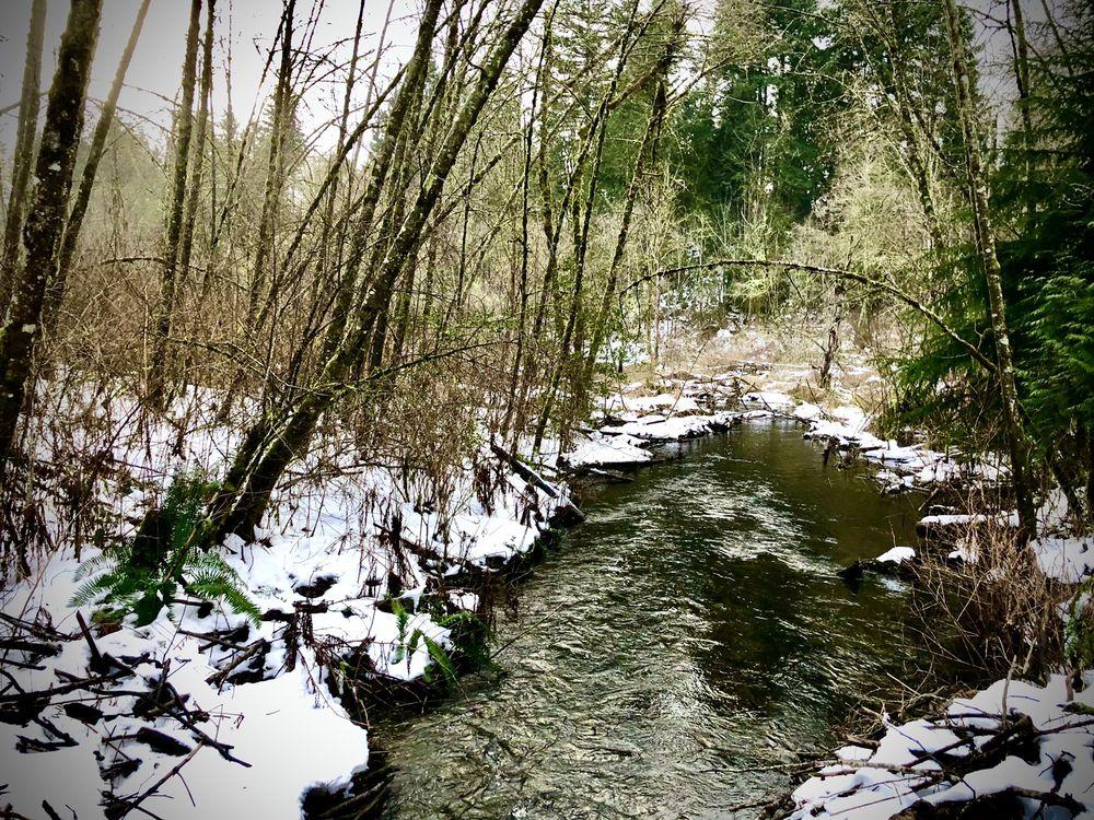 Mill Creek Nature Preserve: 1100-1124 Mill Creek Rd, Mill Creek, WA