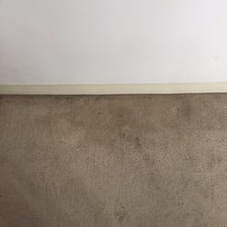 The Best 10 Carpet Cleaning Near Everett Ma 02149 Last