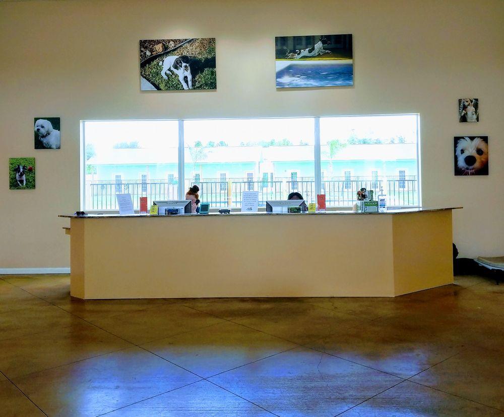 Playful Pawz - A Canine Resort: 1050 S Kemah Dr, Kemah, TX