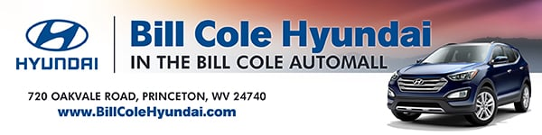 Bill Cole Hyundai: 720 Oakvale Rd, Princeton, WV