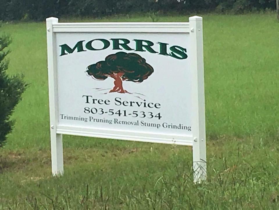 Morris Tree: 426 Gardner Rd, Blackville, SC