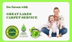 Great Lakes Carpet Service: Bridgman, MI