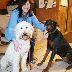 Southwest Ohio Doberman Rescue 18 Photos Animal Shelters 2524