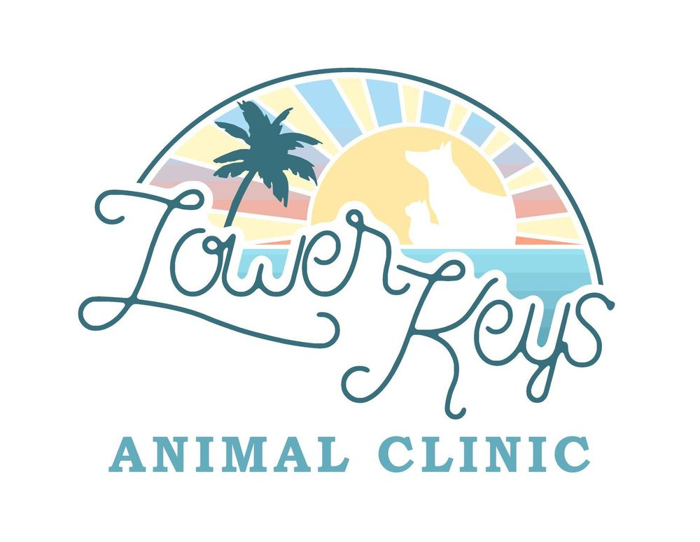 Lower Keys Animal Clinic: 1456 Kennedy Dr, Key West, FL